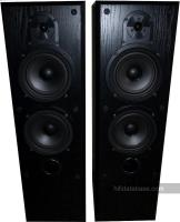 Bowers Wilkins Vision DS4