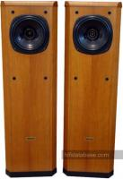 Tannoy Definition D300